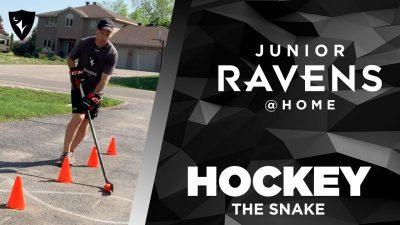 Thumbnail for: Junior Ravens Hockey – The Snake