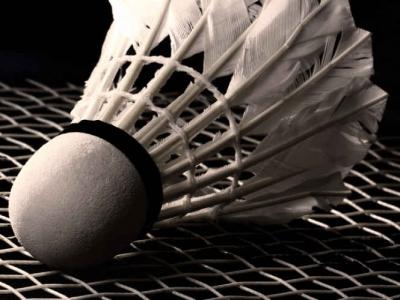 Photo for the news post: Badminton & Pickleball